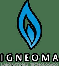 IGNEOMA - Consultoría Tecnológica